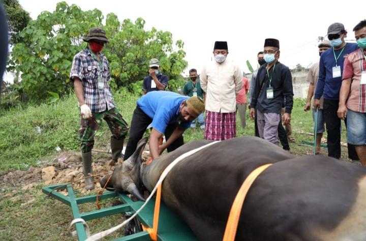Herman Deru Apresiasi Alat Potong Hewan Kurban, Inovasi Warga Talang Gading Kalidoni